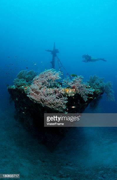 Scuba diver at the Halaveli wreck, Ari Atoll, Maldive Islands, Indian Ocean