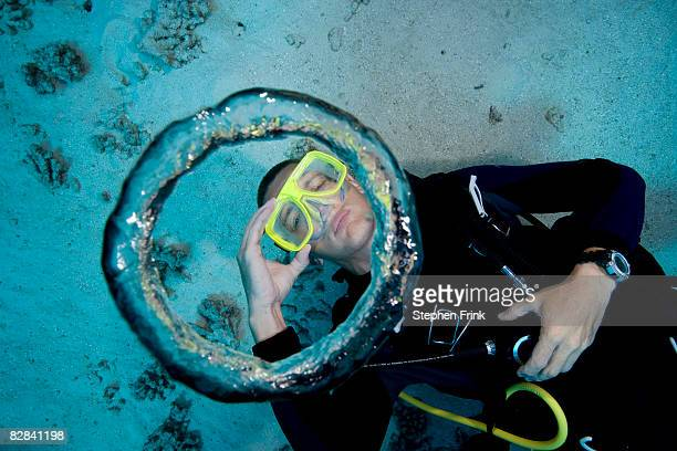 scuba diver blows air bubble rings - underwater diving stock pictures, royalty-free photos & images