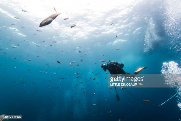 a scuba diver carrying an anchor in the sea - underwater diving ストックフォトと画像