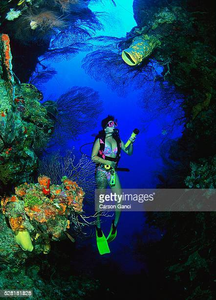 Scuba Diver Exploring Cave