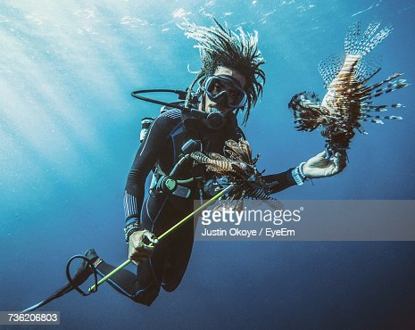 Scuba Diver Feeding Lionfishes Undersea