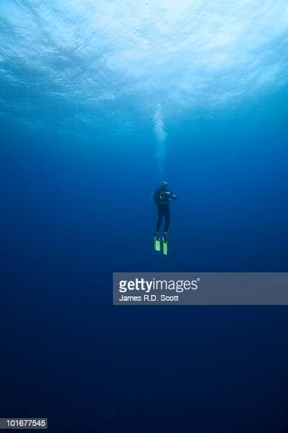 Scuba Diver floating mid water