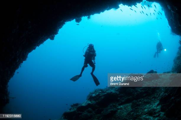 scuba diver in cave at apo island - indo pacific ocean stock pictures, royalty-free photos & images