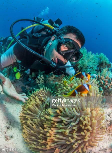 Scuba diver in natuurlijke omgeving