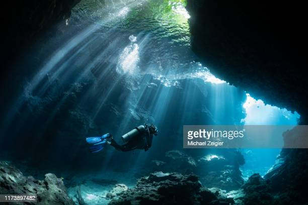 scuba diver in shallow lagoon - pacific ocean stock pictures, royalty-free photos & images