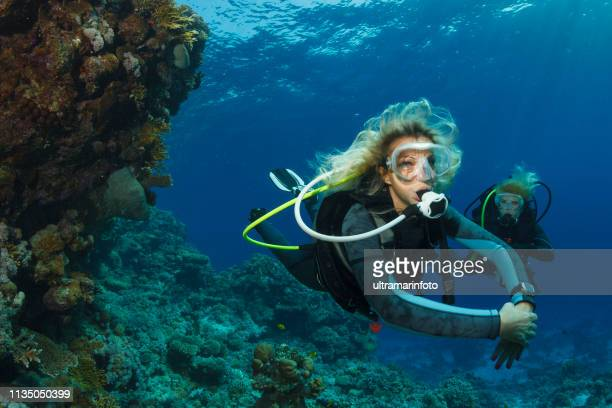 scuba diver is exploring and enjoying coral reef  sea life  sporting two blond sporting women underwater photo - scuba diving stock pictures, royalty-free photos & images