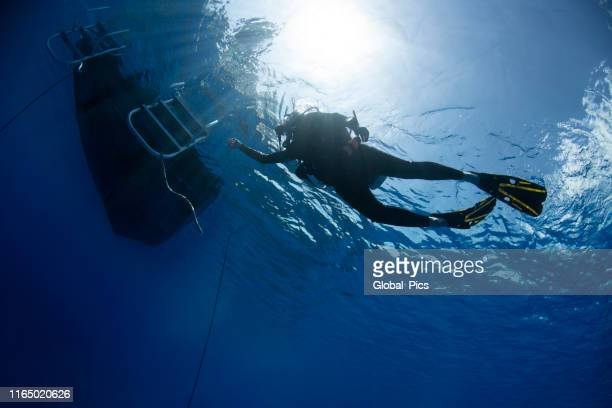 scuba diver returning to the boat - undersea stock pictures, royalty-free photos & images