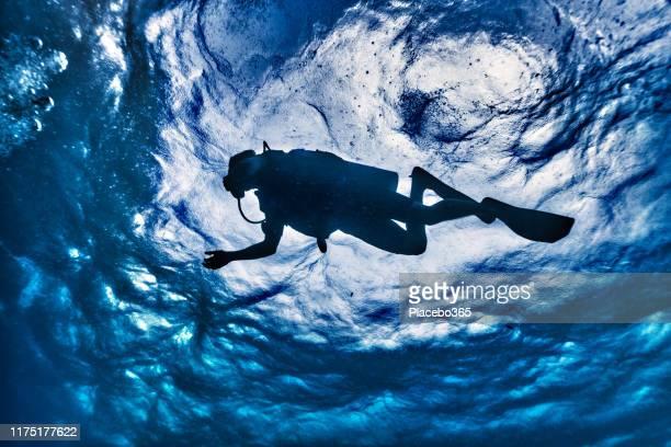 scuba diver silhouette unterwasser-low-winkel-ansicht - sporttauchen stock-fotos und bilder