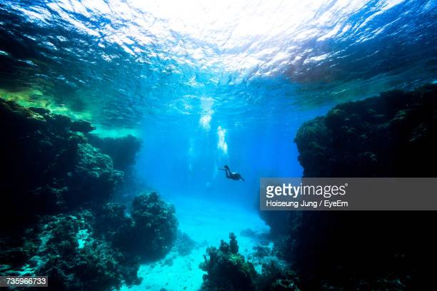 scuba diver swimming in red sea - fonds marins photos et images de collection