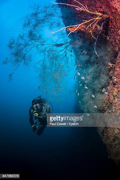 Scuba Diver Swimming Under Deep Water