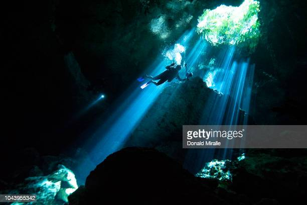 A scuba diver swims through rays of light coming into a massive underground underwater cave in the Cenote Taj Maha in Quintana Roo Mexico on...