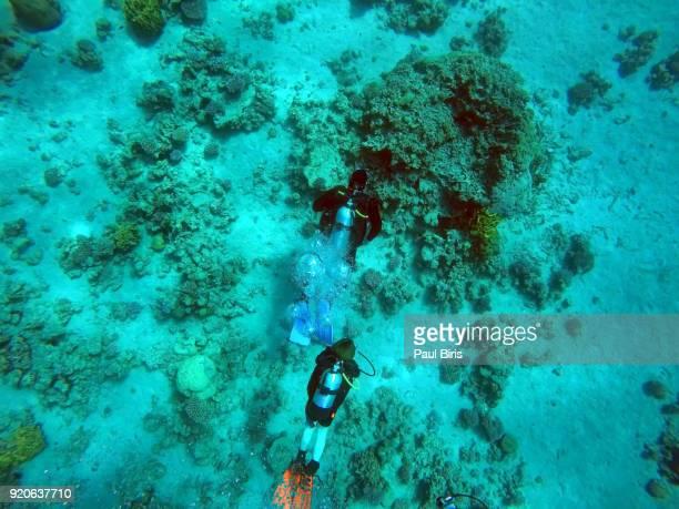 Scuba Divers Swimming In the Death Sea, Aqaba, Jordan