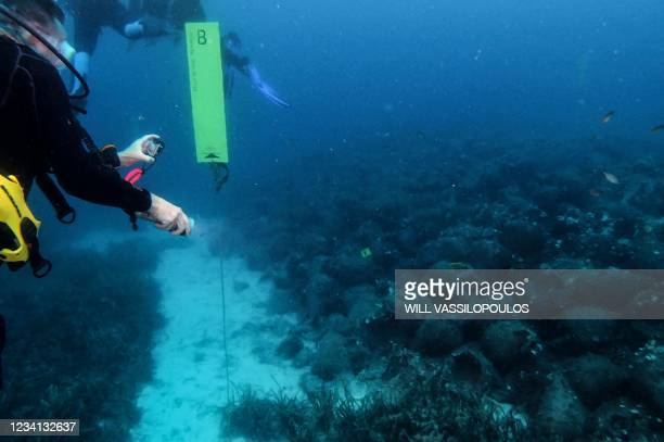 Scuba divers visit the underwater museum in the Aegean Sea, off the coast of the Greek island Alonissos on July 20, 2021. - Resting at a near 30...