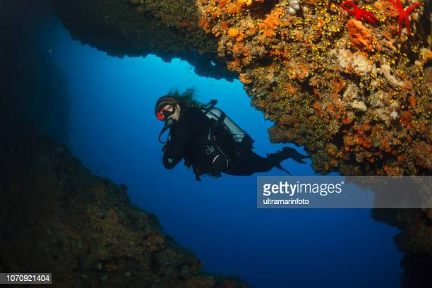 scuba diving exploring and enjoying   sea life  sporting women long blonde hair  water sports  scuba diver point of view - freshwater stock pictures, royalty-free photos & images