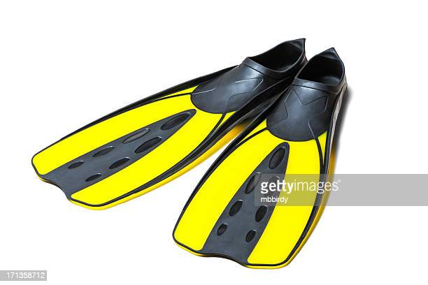 Scuba diving fins, flippers