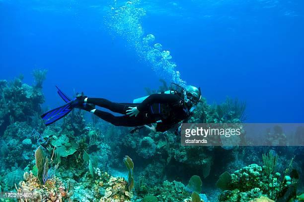 La plongée sous-marine dans les Caraïbes