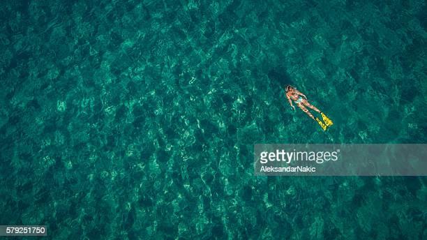 scuba diving in turquise waters - zwembril stockfoto's en -beelden