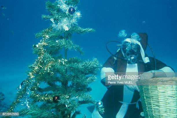 Scuba diving instructor dressed as Santa Claus to celebrate Christmas