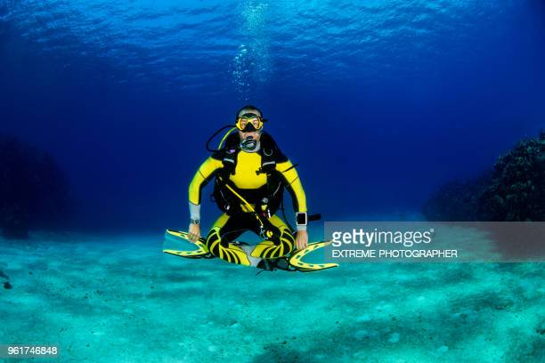 scuba diving - big bottom stock pictures, royalty-free photos & images