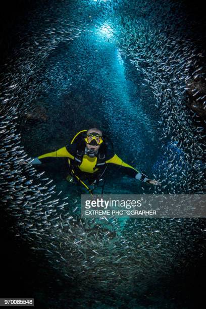 scuba tauchen - sporttauchen stock-fotos und bilder