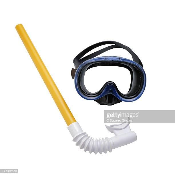scuba mask and snorkel - zwembril stockfoto's en -beelden