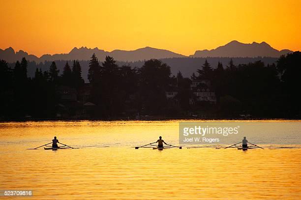Scullers on Lake Washington at Dawn