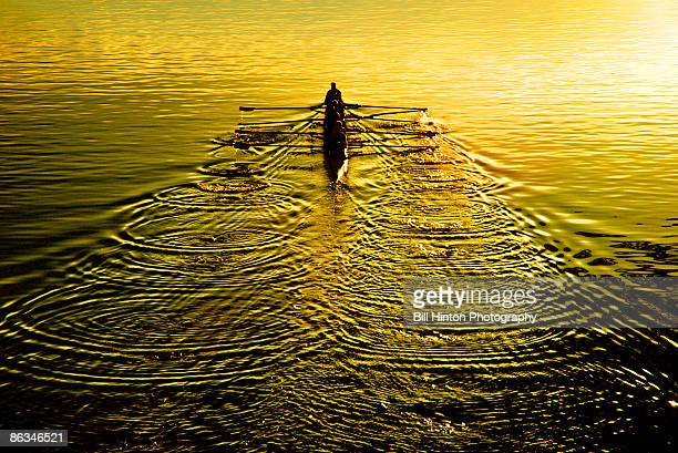 Sculling team at sunset