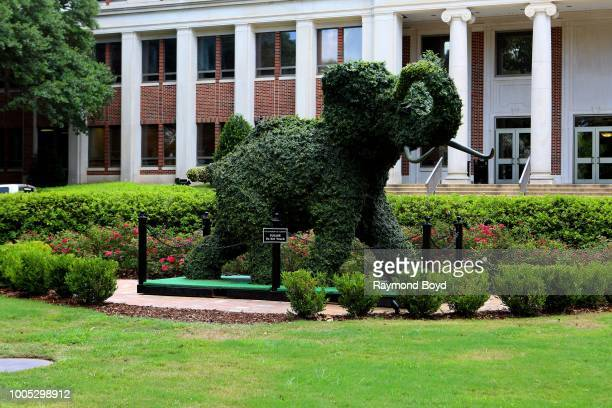 A sculpted Elephant Alabama Crimson Tide's mascot stands outside the Rose Administration Building at the University Of Alabama in Tuscaloosa Alabama...
