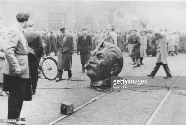 A sculpted head of Stalin knocked off its statue during an antiRussian demonstration lies in the middle of a road in Budapest