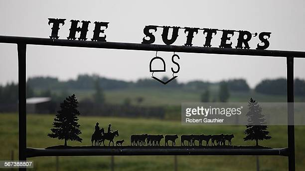 VIKING ALBERTA SATURDAY AUGUST 16 2014 A sculpted sign featuring the Darryl Sutter brand stands at the entrance to his sprawling cattle ranch