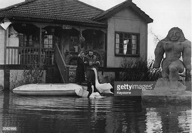 Sculptor Jack Bilbo and his wife feeding swans outside his studio after floods in Weybridge Surrey His garden here in Bilbo Bay is dotted with his...