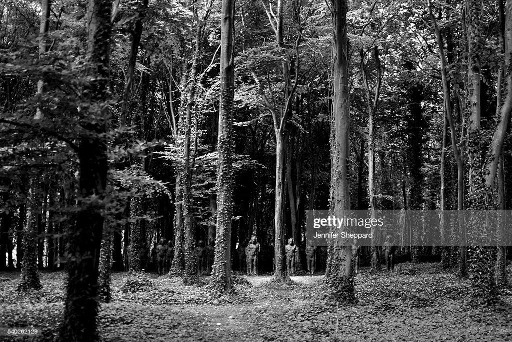 Sculpture Figures Amongst Trees : News Photo