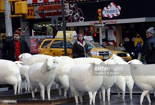 A sculpture of a flock of 24 hand made paper sheep titled 'Counting Sheep' by Brooklyn Artist Kyu Seok Oh are unveiled in Times Square March 1 2011...