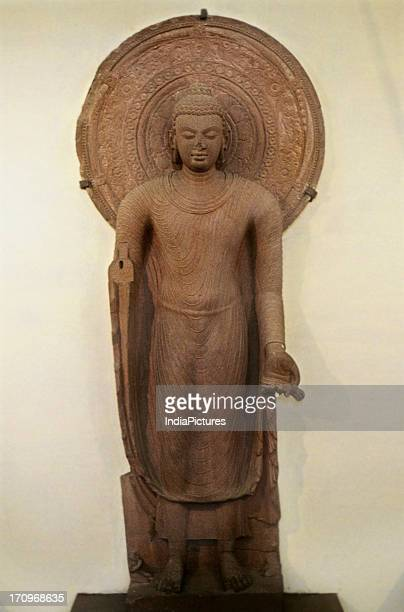 Sculpture of Buddha Mathura Museum Mathura Uttar Pradesh India