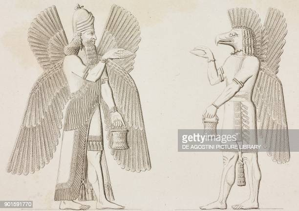 Sculptures from Nineveh Mesopotamia Iraq at the Louvre Museum in Paris engraving by Lemaitre from Chaldee Assyrie Medie Babylonie Mesopotamie...