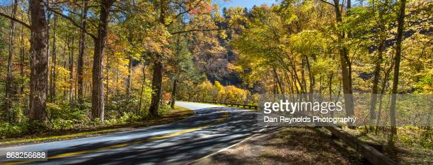 S-Curve Road in the Great Smokey Mountains National Park-Pano