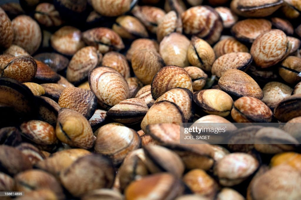 Sea almonds fished in the north-east Atlantic ocean are displayed at a supermarket, on December 21, 2012 at the Kremlin-Bicetre, outside Paris.