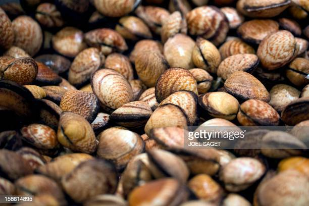 Sea almonds fished in the northeast Atlantic ocean are displayed at a supermarket on December 21 2012 at the KremlinBicetre outside Paris AFP PHOTO /...