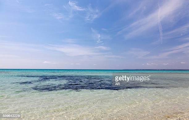 Sea and blue sky, Es Trenc, Majorca, Balearic Islands, Spain
