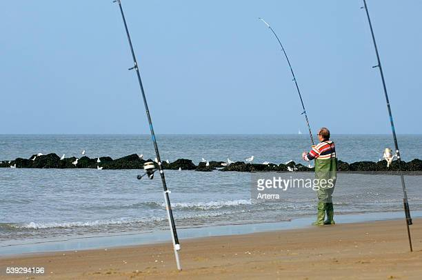 Sea angler with many fishing rods fishing from beach along the North Sea coast