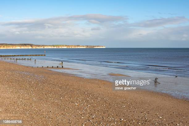 sea anglers beach fishing at bridlington on the east coast of england. - bridlington stock pictures, royalty-free photos & images