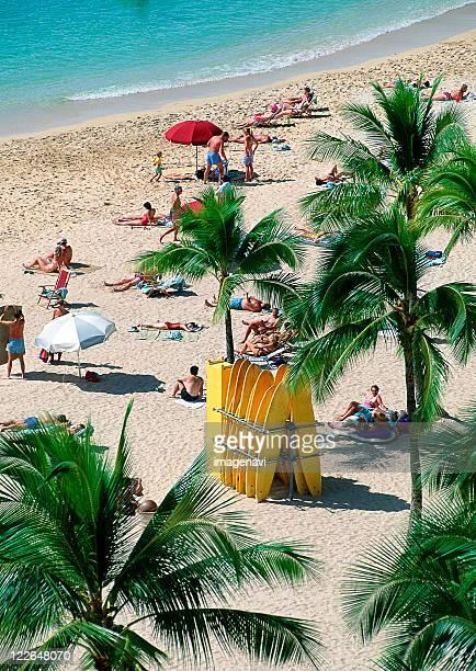 sea bathing - waikiki stock pictures, royalty-free photos & images