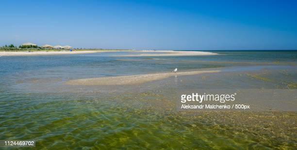Sea beach against clear sky