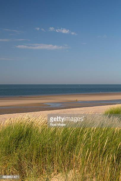 Sea, beach and sandy dunes with Marram grass.