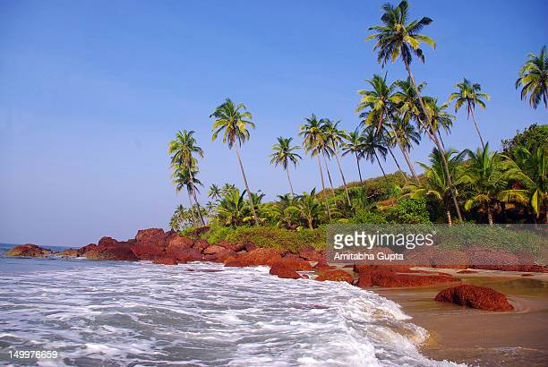 Sea beach with waves, red rocks and palm trees