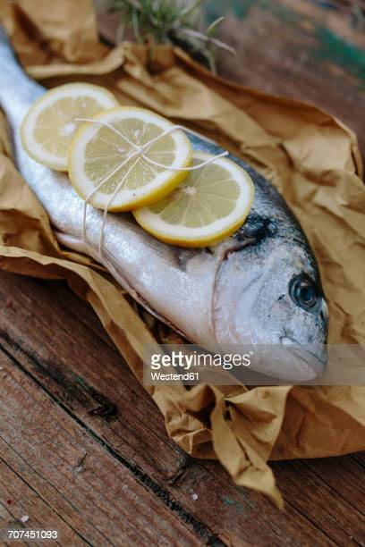 Sea Bream on a baking paper with lemon