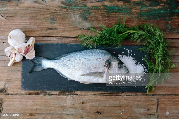 Sea Bream on a slate board with dill and salt and garlic
