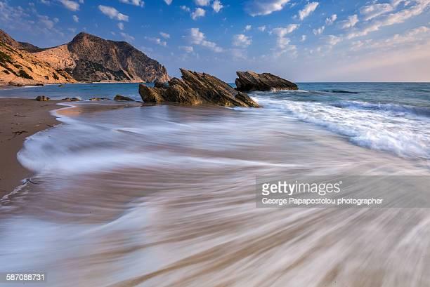 Sea carpet