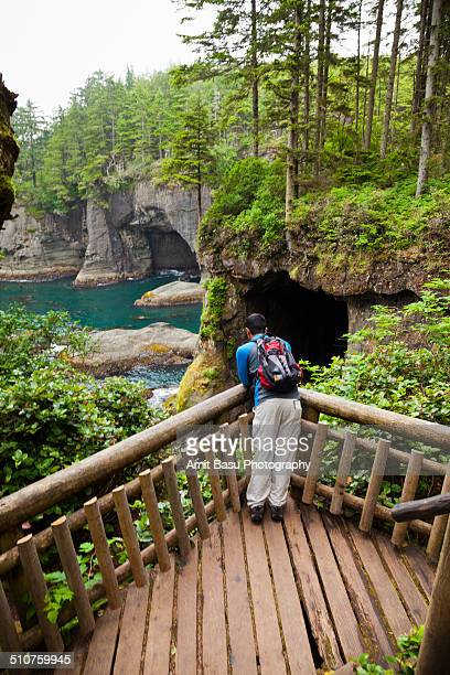 sea caves at cape flattery - cape flattery stock photos and pictures