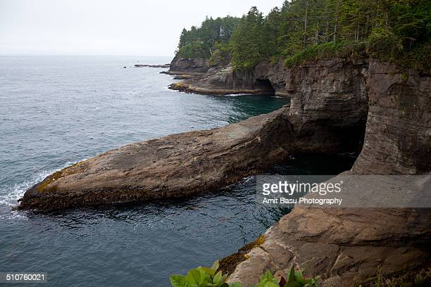 sea caves at cape flattery, washington - cape flattery stock photos and pictures